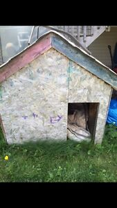 Dog House.  Want it gone!!!