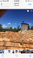Roofing specialist!