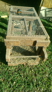 Well-built animal cage