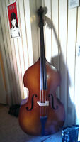 STAND UP DOUBLE BASS