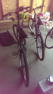 2 Bikes For Sale. 1 Male, 1 Female. Sold Together or Separately Regina Regina Area image 6