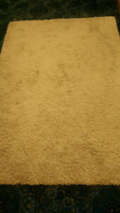 MOVING SALE!!! Comfy Area Rug!  MUST GO!