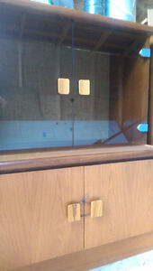 Teak and Glass Wall Unit