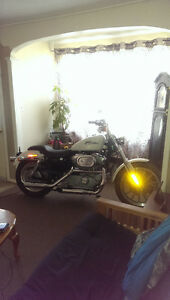 Harley Davidson Sportster custom for trade