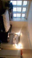 1 spacious bedroom Downtown