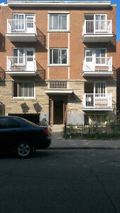 Large 3 ½ Apartments FULLY RENOVATED Available in Park Ex