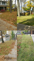 Is your lawn a mess? Do your gutters need to be cleaned?
