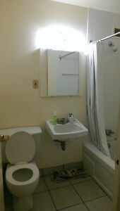 Sublet - Full furnished apartment (available Dec 15th to Sep 1st Kingston Kingston Area image 7