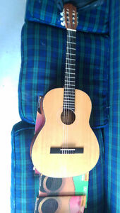 Beaver Creek 6 String Acoustic Guitar With Case and Music Stand