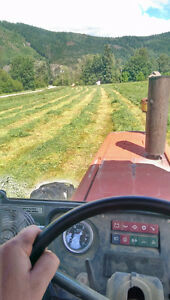 First Crop Hay - Straight Grass & Grass Alfalfa