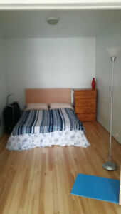Sublet/Lease Transfer for Beautiful Double Room in a 3 Bed. Apt.