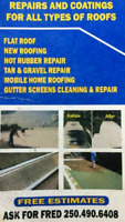 Ackerman Roof repairs , maintenance and cleaning