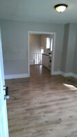 Beautiful 1 bedroom apartment, with a lovely large yard ALL INCL