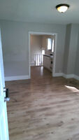 Beautiful 1 or 2 bedroom apartment, ALL INCL, lovely yard!