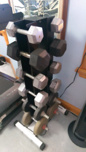 Dumbbell set with bench and weight tree