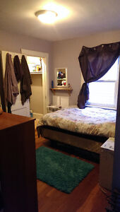 Room in house near Quinpool Avail. Dec 1
