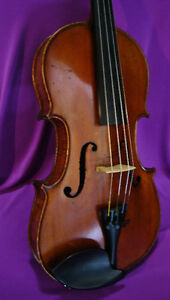 VINTAGE GIUSEPPE MARAVELLI 4/4 VIOLIN....Reduced price.