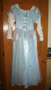 Adult/Teen Princess Dress and Egyptian Princess - approx 6 to 10