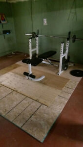 Workout equipment, starting strength. Olympic bar and squat rack