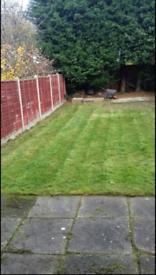 Cut and clean garden grass!!