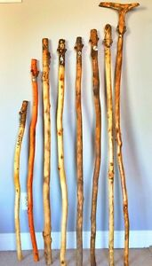 Custom Hiking/Walking Sticks by The Cool Stick Company