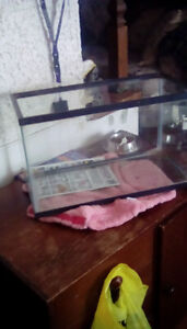 5 US Gallon Small Fish tank