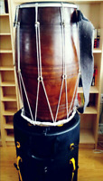 Professional dhol players available in Toronto