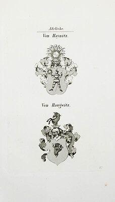 1848 Wappen von Haynitz von Haugwitz 2 Kupferstiche Tyroff