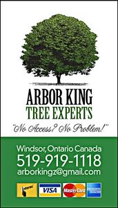 FREE QUOTES CALL ABOR KING TREE EXPERTS !! TODAY !!