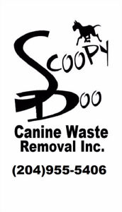 Scoopy Doo - Fall / Winter - Dog Waste Removal Services :)