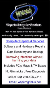 Computer cleanup and virus removal $55-$60 NO hourly rate.