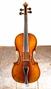 VIOLIN,  VIOLA  AND  THEORY LESSONS