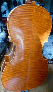 over 60 violins, $200.00 and up, 779-4090
