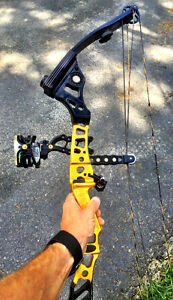 Conquest APEX Compound Bow - Mathews.  Blk & yellow - Right Hand Cambridge Kitchener Area image 3