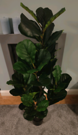Brand New Artificial 130cm Fiddle Fig Plant