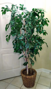 75-Inch Tall Artificial Plant Tree