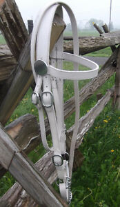 Draft  size new Halter Bridle combo