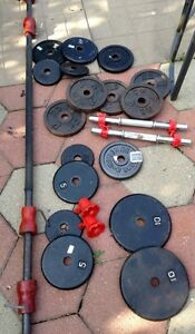 Weight Bench with Bars and Metal Weights