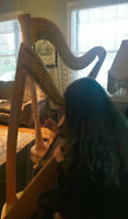 Intro to Harp Lessons - Classes