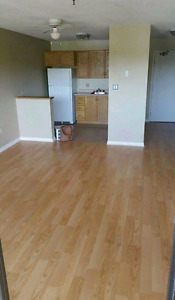 Bachelor Apartment in North End Halifax - close to nscc