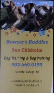 BOWSER'S BUDDIES DOG TRAINING & DOG WALKING