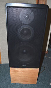 Canton Karat 40 speakers