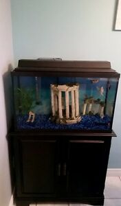 Fish Tank, Stand, Fish, and Supplies