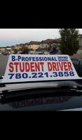 B-Professional Driving School