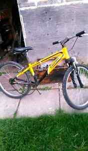 Near complete dirtjumper. 24 inch need gone