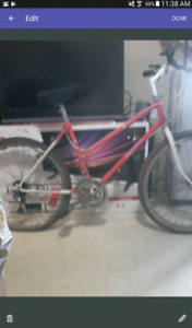 Wanted Womens 18 or  21 speed bicyle