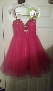Pink Dress New with tags