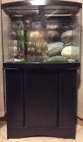 Curved bow front fish tank aquarium