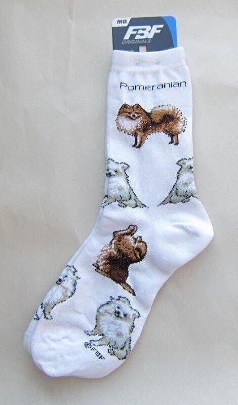 Adult Socks POMERANIAN Poses Fashion Footwear Dog Socks Size Medium 6-11