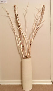 Decorative branches and vase